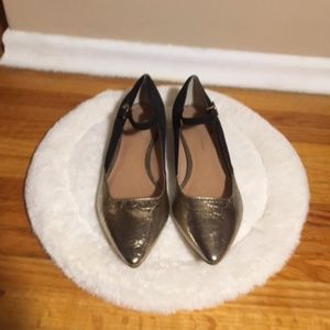Gold Toed Flats with Ankle Strap